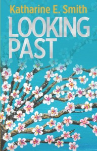 Looking Past book cover EBOOK reduced