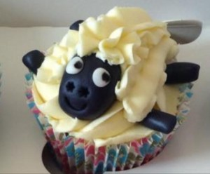 Cheeky sheep close up (2) reduced