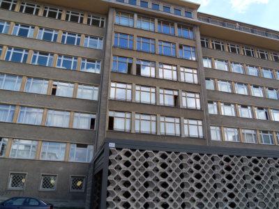 Margarita Stasi HQ